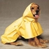 Puddles Raincoat for dogs