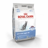 Royal Canin Feline Health Nutrition Indoor Light 40 Dry Cat Food 15 Lb Bag