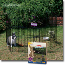 Rabbit Run Around Exercise Pen