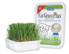 Gimborn Treat Cat Grass Plus 5 oz