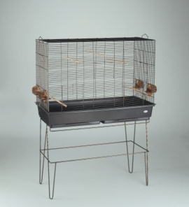 Parakeet Display Cage, Antique Brass Painted Finish