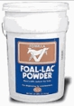 Foal Lac Powder by PetAg 4.5Lbs