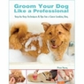 Groom Your Dog Like a Professional