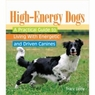 High - Energy Dogs