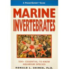 Pocket Expert Guide to Marine Invertebrates