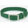 Hagen Dogit Nylon Collar with Buckle - Double Ply 1 X 26 inch Green