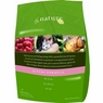 By Nature Natural Kitten Formula Dry Cat Food 4-lb bag