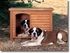 The Extreme Outback Log Cabin Dog House