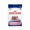Royal Canin Maxi Breed Baby Dog (30) 6 Lb Bag