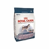Royal Canin Maxi Joint & Coat Care 28 Dry Dog Food 6 Lb Bag