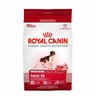Royal Canin Medium Breed Adult (25) 30 Lb Bag