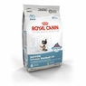 Royal Canin Feline Health Nutrition Indoor Intense Hairball 34 Dry Cat Food 3 Lb Bag