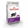Royal Canin Feline Health Nutrition Special 33 Dry Cat Food 3.5 Lb Bag