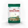 Royal Canin Mini Breed Special Dog (30) 3 Lb Bag