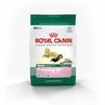 Royal Canin Mini Breed Baby Dog (30) 15 Lb Bag