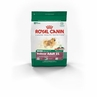 Royal Canin Mini Indoor Adult (21) Formula Dry Dog Food 3 Lb Bag