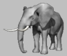 <B>In the Center Ring: Elephant Abuse -8/23/00-</B>