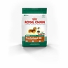 Royal Canin Mini Breed Dachshund (28) Formula 3 Lb Bag