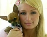 Paris Hilton Dumps Tinkerbell For Bambi