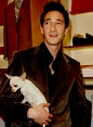 Adrien Brody with Chihuahua Ceelo Vicious