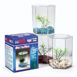 Betta Hex with Lid, Gravel and Plant by Lee