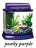 Mini Bow 2.5 Gallon Bow Front Acrylic Aquarium Kit Purple