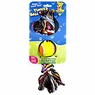 Aspen Toy Tennis Ball N Bone Small