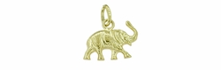 Lucky Elephant Charm in 14 Karat Gold