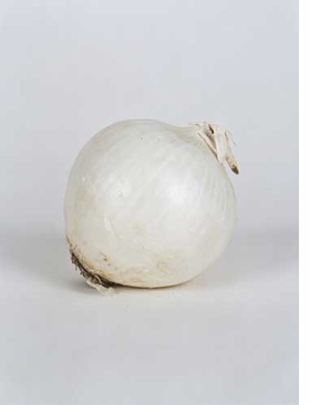 Featured image is reproduced from <I>Elad Lassry: On Onions</I>.