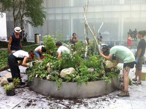 Fritz Haeg and Annie Novak installing the organic garden in the MoMA Sculpture Garden Spring 2012 to be harvested for MoMA Studio Common Senses opening September 24, 2012. Color photograph courtsey Haeg Studio.