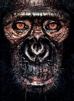 James Mollison: James & Other Apes