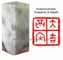 Chinese Seal Stamp - Auspiciousness, Prosperity & Wealth #35