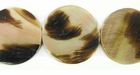 Brownlip Coin Shell Beads 20mm