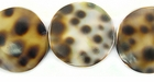 Tiger Cowrie Coin Shell Beads 20mm