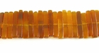 Golden Stick Horn Beads 5x15mm