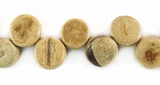 Tiger Disc Coco Beads 8mm