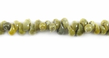 Green Mongo Whole Shell Beads 4x5mm