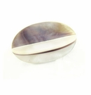 Hammershell Purple 4- Sided 22x36mm