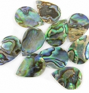 Paua Teardrop Shell Beads
