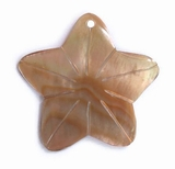 Brownlip Star Shell Pendant 25x23mm