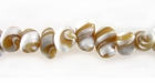 Troca Oyok Nugget Shell Beads 9mm