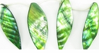 Olive Green River Shell Leaf Beads 26x46mm