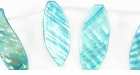 Turquoise River Shell Leaf Beads 26x46mm
