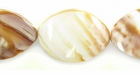 Snail 3Sided Shell Beads 16x25mm