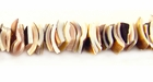Fragum Crazycut Shell Beads 6-8mm