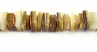 Goldlip Crazycut Shell Beads5-7mm