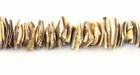 Voluta Crazycut Shell Beads 6-8mm
