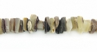 Hammerhead Crazycut Shell Beads 6-8mm
