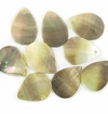 Blacklip Teardrop Shell Beads