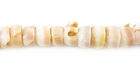 Puka Shell Beads 6x3.75mm